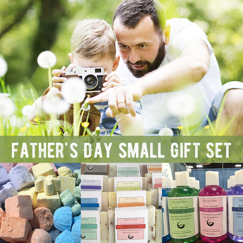 Father's Day small Gift Set (2 shower fizzies, handmade shea soap, body wash)