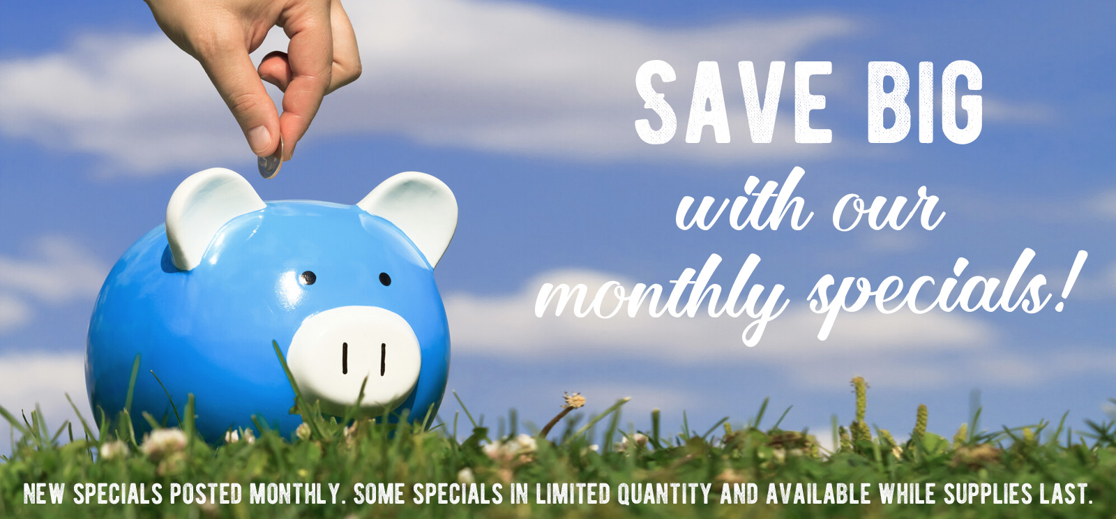 save on our monthly specials